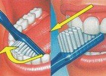 Bass modificata igiene orale secondo step